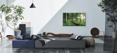 Imagem de sala de estar a mostrar o conceito Living Decor