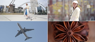 Imagens de exemplo a utilizar a lente macro, a lente teleobjetiva, a lente de distância focal fixa e a lente grande angular